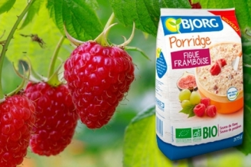Porridge figue framboise de Bjorg